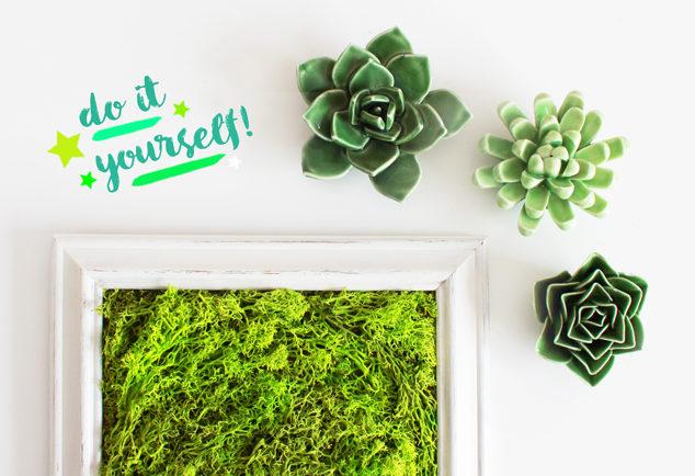 DIY Moosbild selber machen als Wanddeko | DIY Blog aus Köln | DIY ...